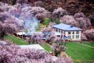 """旅游扶贫精准破解""""美丽贫困""""——西藏林芝发展生态旅游助力精准脱贫"""