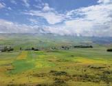 天山褶皱中:一条沟的发现,一个村的新生