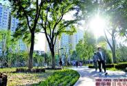 """北京丰台:城市""""森林""""公园长成记"""