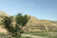 宁夏宁东基地近8000亩旧煤场将得到生态恢复