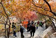 北京:生态涵养区的头等大事