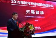 2019新年专家智库强国论坛在京召开