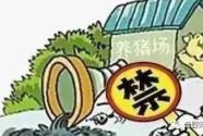 """生豬養殖""""治污記"""""""
