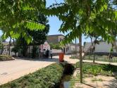 """安徽长丰:激发村民参与人居环境整治的""""原动力"""""""