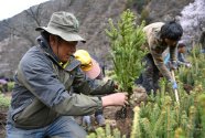 政策脫節:保了生態,保不了發展