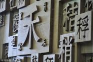 """架设哥中友谊与交流的桥梁——访哥斯达黎加""""中国文化日""""提案者戴维·戈尔松"""