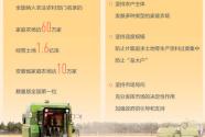 家庭農場 農業高質量發展生力軍