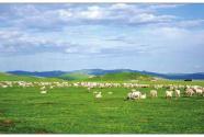"""內蒙古牧區老年人有了安度晚年的""""家"""""""