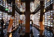 网红书店是否远离了阅读