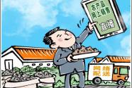 """云带货、抢流量……""""县长直播""""热背后的助农新思路"""