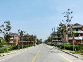 镇区景区化、景区全域化、全域特色化 常乐镇提升人居环境质量持续行动