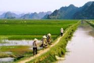 扶贫产业怎样实现可持续发展