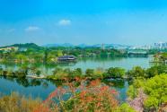 畅游山海惠州 尽享健康生活