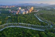 广州市白云区全力推进农村公路路网提质优化