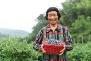 这里的山地农业迸发魅力