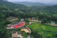 廣東豐順慶祝2020中國農民豐收節暨農民直播節圓滿舉行