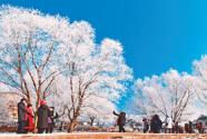 冰雪旅游收入可觀