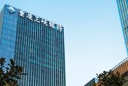 """重庆三峡银行: """"库区银行""""助力三峡库区绿色蝶变"""