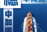 稳健复苏!我国一季度外贸同比增长29.2%