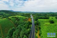 開著汽車看鄉村:一體化發展路更寬
